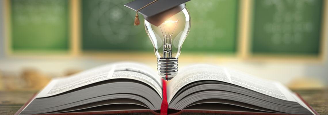 Cursus universitaire